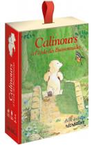 Calinours a l-ecole des buissonades - le jeu