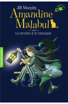 Amandine malabul, la sorciere a la rescousse