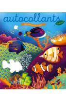 Autoc nature animaux de la mer
