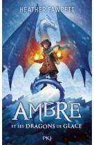 Ambre et les dragons de glace