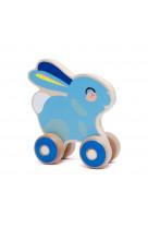 Bunny push toy